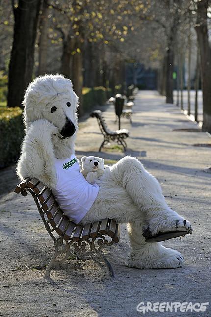 greenpeace-y-la-familia-oso-po-4